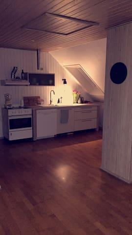 Hyggelig lejlighed med skråvægge - Odense - Apartment