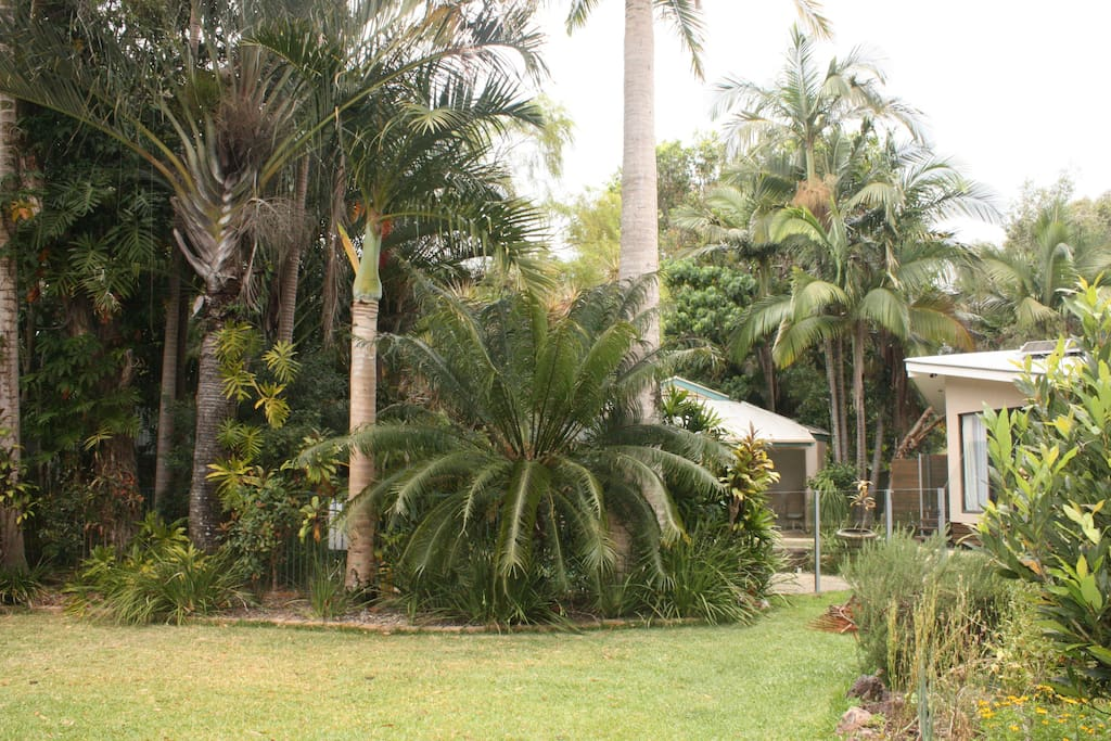 Tropical gardens with large back yard.