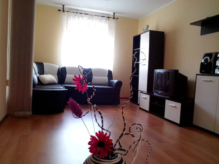 Apartment Sanja - Pazin