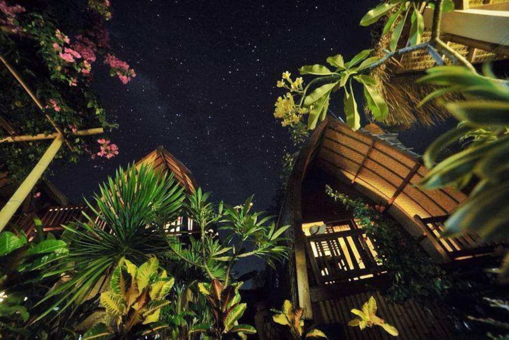 magical nights at rumah cahaya