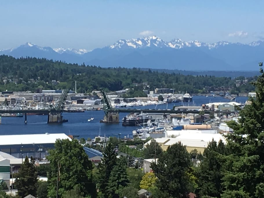 One of the views from penthouse deck, the Ballard bridge going up and the Olympic Mountains.