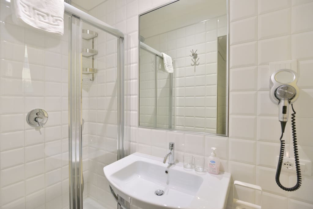 Private bath-room with shower, toilet-bidet, soft towels, hair dryer, basic toiletries.