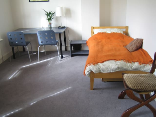 Super Large Sunny Twin Room - London - House