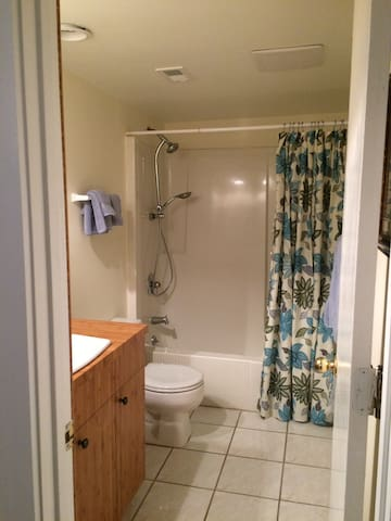 Master Bath w/tub & shower