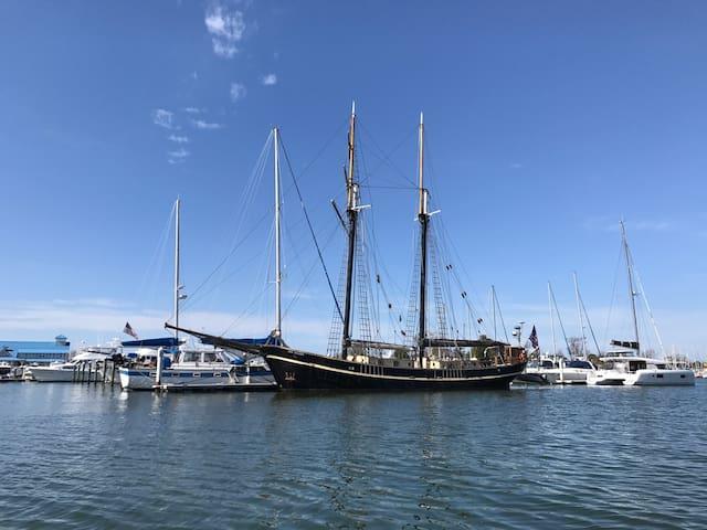 Tallship Unicorn, Bluenose cabin - Hampton - Hajó