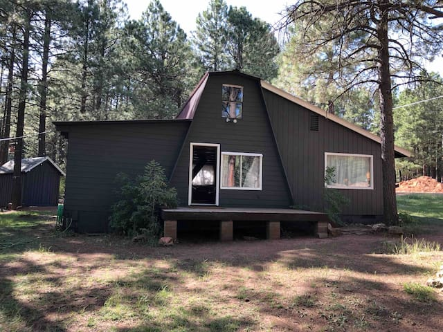 Charming Cabin in the Pines of Forest Lakes, AZ