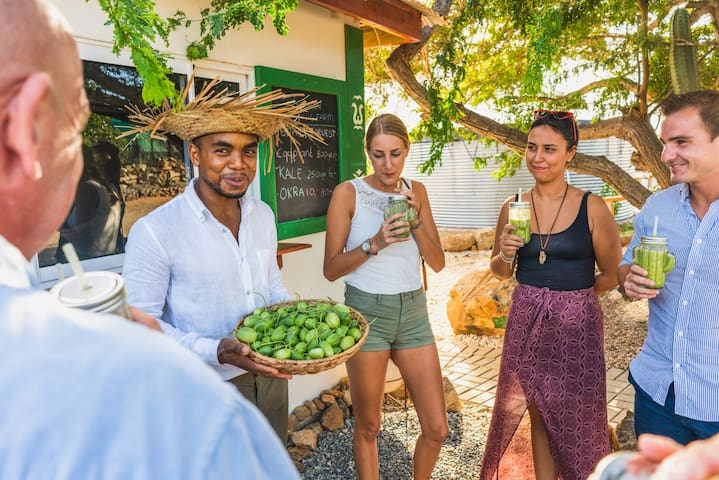 Learn about Aruba's local Flora and grown vegetables