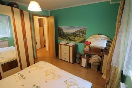 Cozy green double room - București