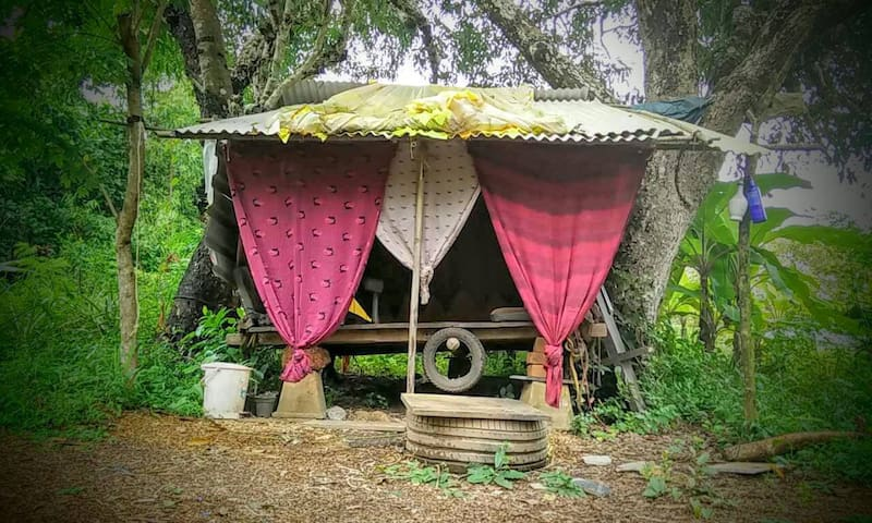 Suspended hut between 2 Jamun trees @ Cirrus, Goa - Anjuna - Pondok