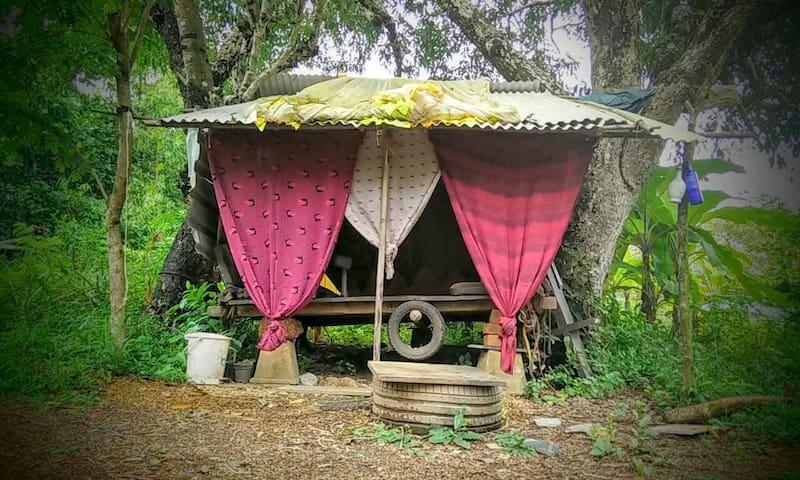 Suspended hut between 2 Jamun trees @ Cirrus, Goa - Anjuna - Hut