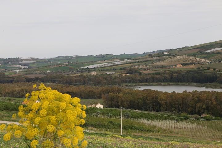 Casa degli ulivi.