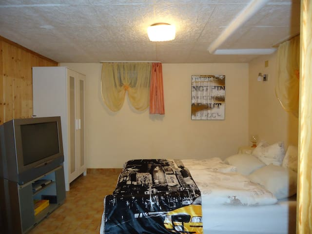 Gemütl. Souterrainapartment bei Biebricher Allee - Wiesbaden - Apartment