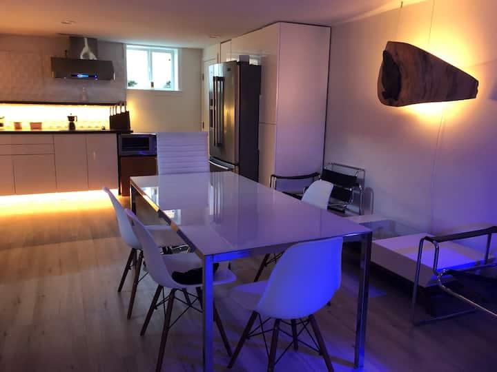 Luxury 1 BR + Den lower level apartment