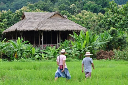 Paddy Field in Lisu Village - Mae Taeng District - Villa