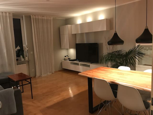 Cozy modern 53 sqm apartment