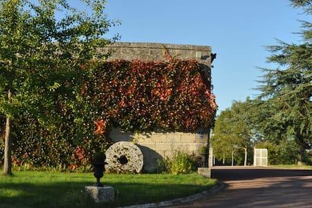 Dans une maison de charme - Montigny-Lengrain - Talo
