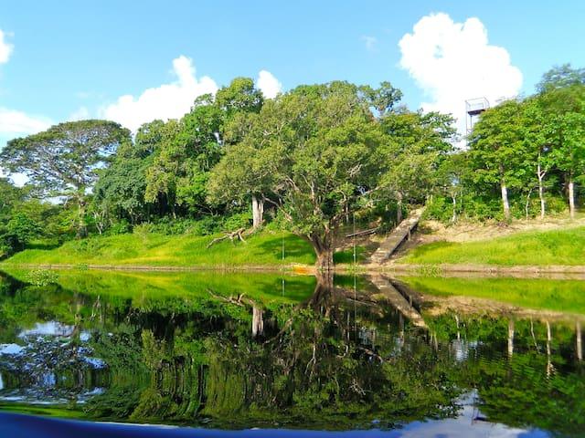 Chuchini Amazon Wildlife Eco Reserve & Lodge