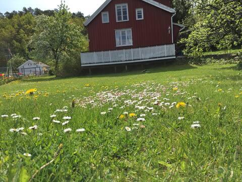 Southern idyll Borøya