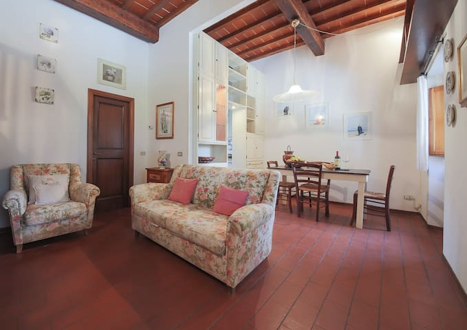 cozy and comfortable home - Florenz - Wohnung