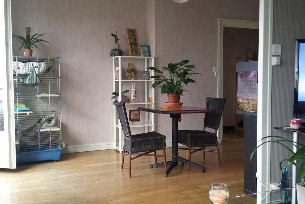 Appartement plus disponible suite d m nagement for Appartement atypique dijon louer