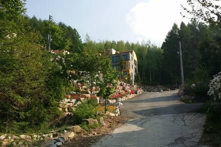 평창 봉평휘닉스파크 스키,골프,수영장(블루캐니언)인근 아름다운 숲속의 힐링공간입니다 - 平昌郡 - 別荘
