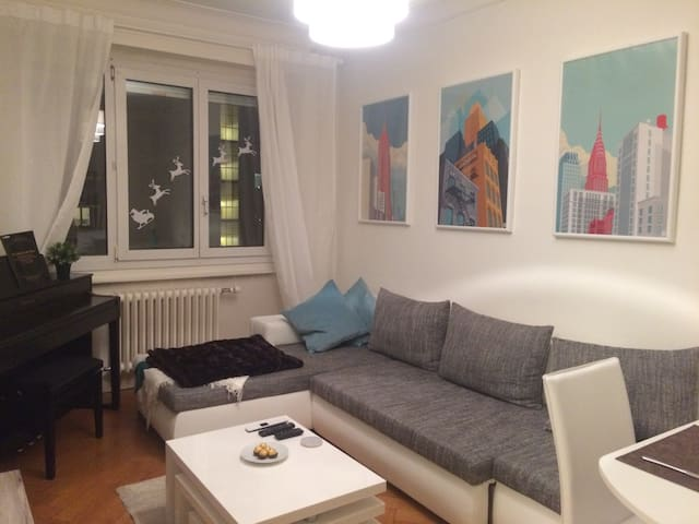 Feel at home in central Geneva - Genève - Appartement