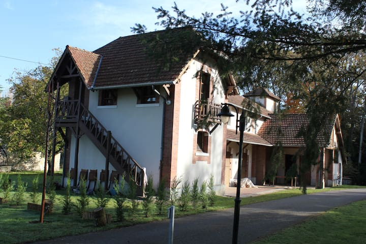 Nice House in a 6ha property. - Neuvy-sur-Barangeon
