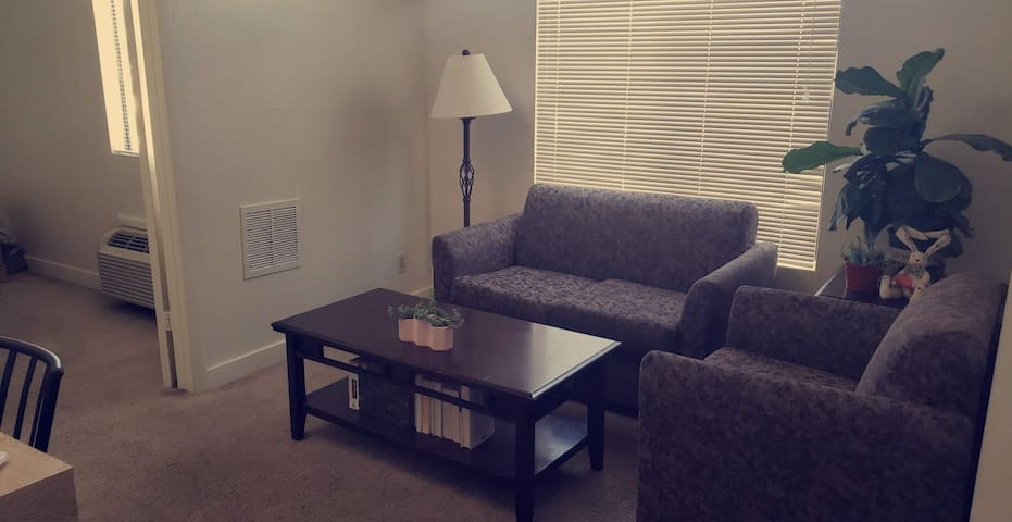 CHEAP APARTMENT CLOSE TO AIRPORT AND DOWNTOWN!