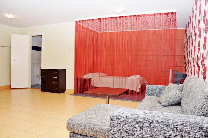 Spacious Studio in the City Center - Tallinn - Apartment