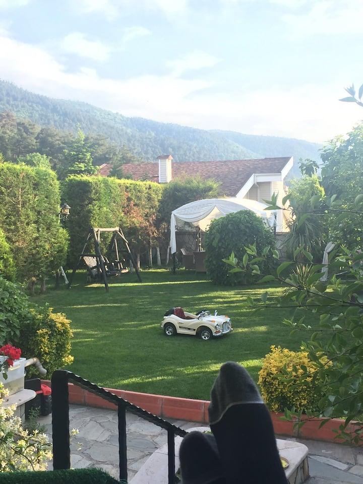 Perfect view, peaceful villa at Doburca Bursa