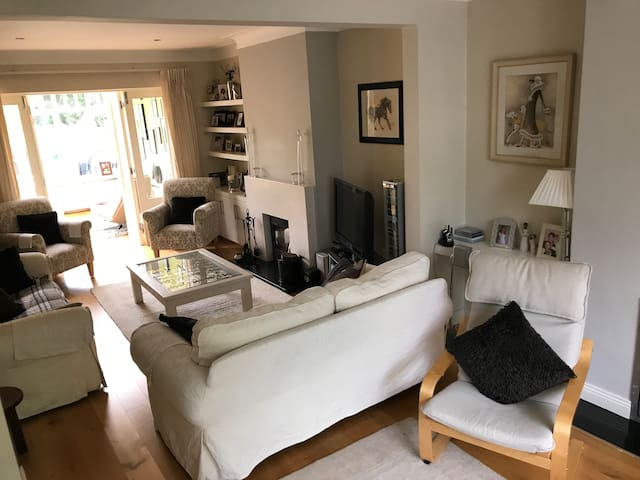 Luxury Spacious House in South Dublin