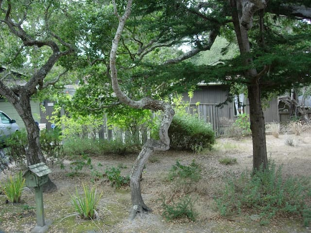 Pebble Beach Nature's Beauty & Tranquility - Del Monte Forest - Huis