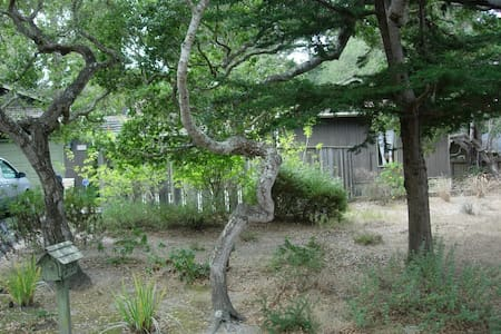 Pebble Beach Nature's Beauty & Tranquility - Del Monte Forest - House