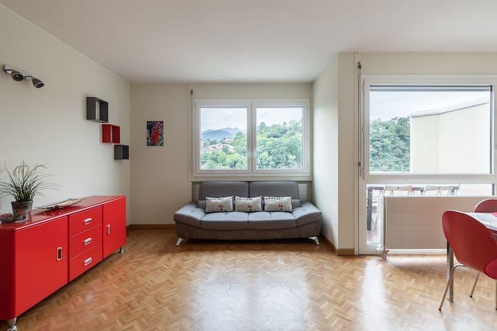 Spacious apartment well served (FAGGI 26)