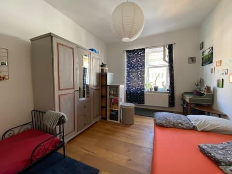 Просторная и очаровательная комната в сказке