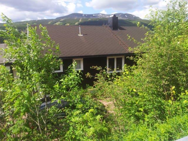 Storvegen 33, 2420 Trysil /Innbygda - Trysil - House