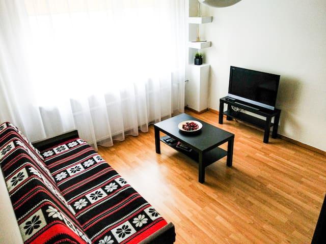 Cozy Trakai apartments