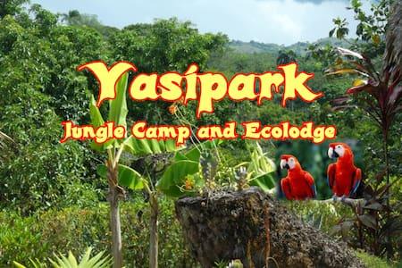 Yasipark - Nature Camp and Ecolodge - C 2 - Yásica Arriba - Pondok