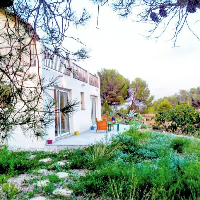 T2 entre vignes garrigues et mer appartements louer montagnac langued - Entre vignes et garrigues ...