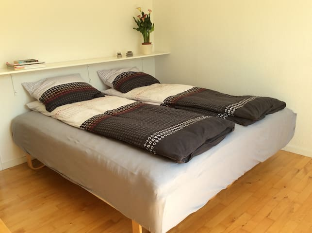 Recharge in Cozy bedroom 1/2 hour from Copenhagen - Ballerup - Daire