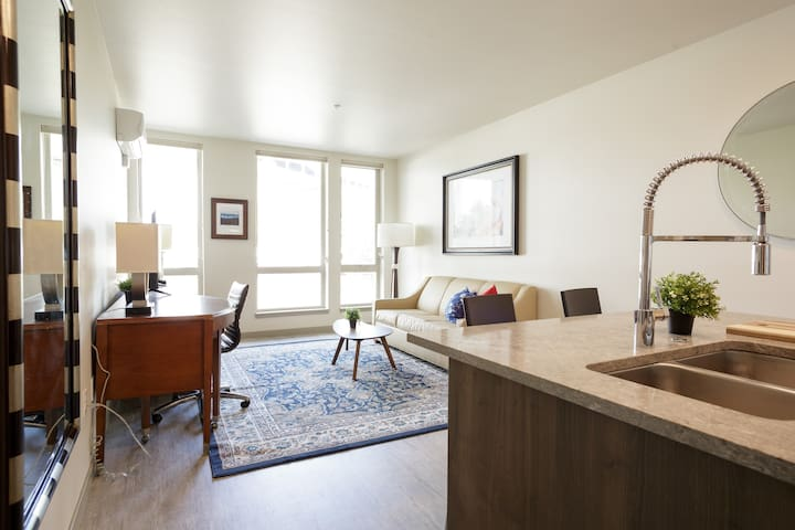 New Stunning 2 Bedroom & 1Bath Apt in Downtown PDX