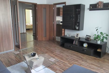 Modern apartment+FreePkg_Self check in/out