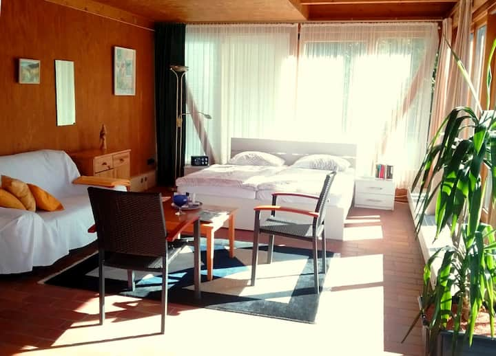 Sunny Studio with Terrace