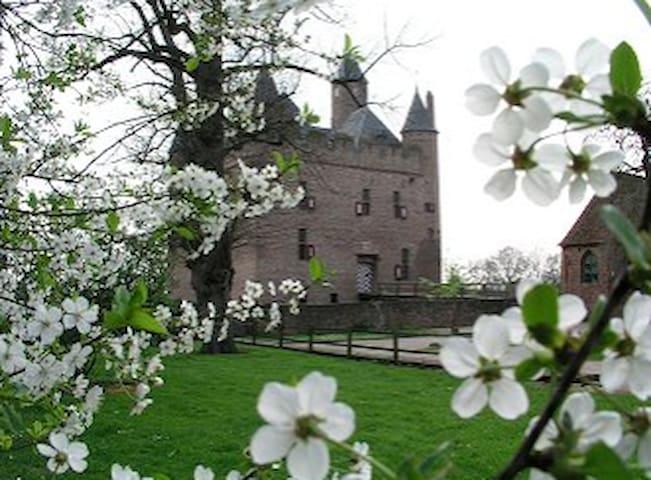 Prachtige woning in Doornenburg(Arnhem/Nijmegen) - Doornenburg - Ev