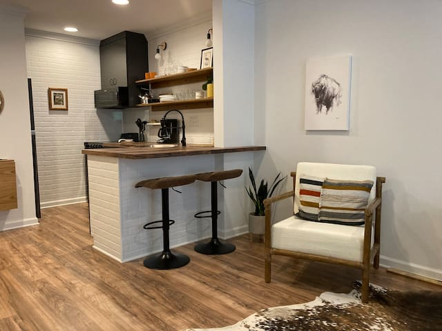Modern Rustic Beautiful Studio Brand New Interior