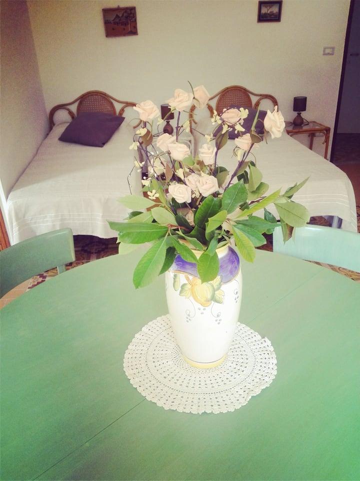Two rooms apartment  in villa Piccione