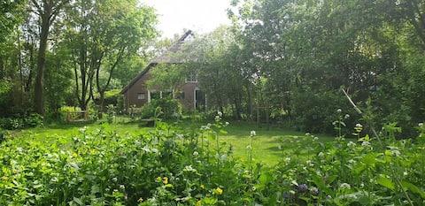 Romslig bondegård / stor hage på et rolig område