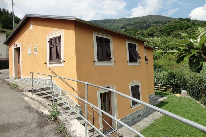 Home grandfather Baciccia