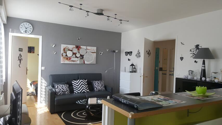 T2 walk to shops, transport - Lille - Apartment