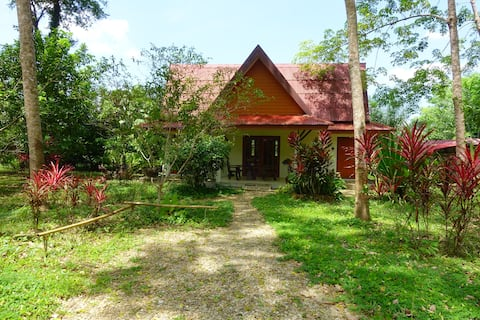 Manora Garden B&B (Family Bungalow, Trang 3)